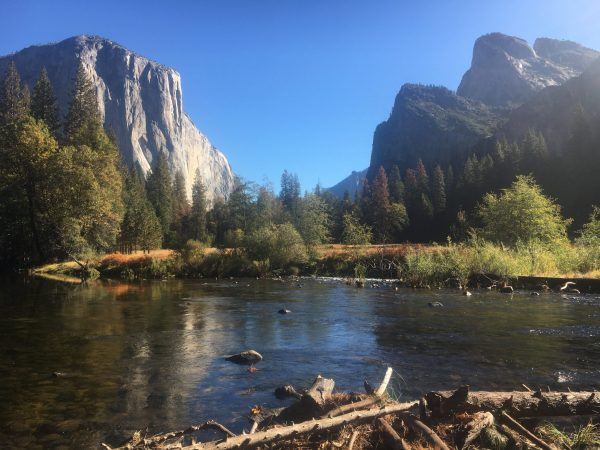 Yosemite National Park with Kids